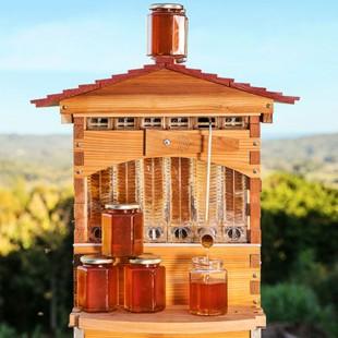 Beehive Flow | Čebelnjak iz katerega si sproti natočite med